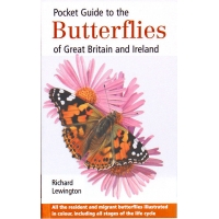 Pocket Guide to the BUTTERFLIES of Great Britain & Ireland, Richard Lewington
