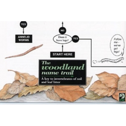 The Woodland Name Trail