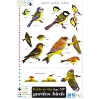 The top 50 Garden Birds in Britain, a laminated fold-out chart