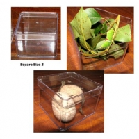 Plastic Box SQUARE Size 3. Carton of 10