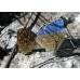 Adonis Blue bellargus 10 larvae