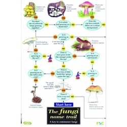 The Fungi Name Trail, a laminated fold-out chart