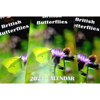 BRITISH BUTTERFLY 2021 CALENDAR by Michael Hampson
